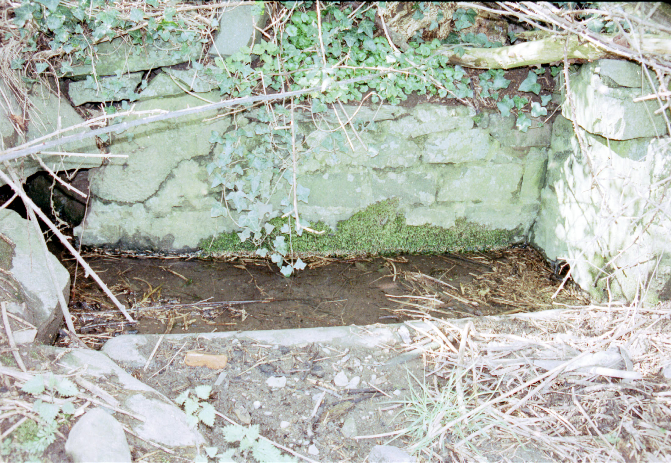 1998 Holy Well Closeup 2
