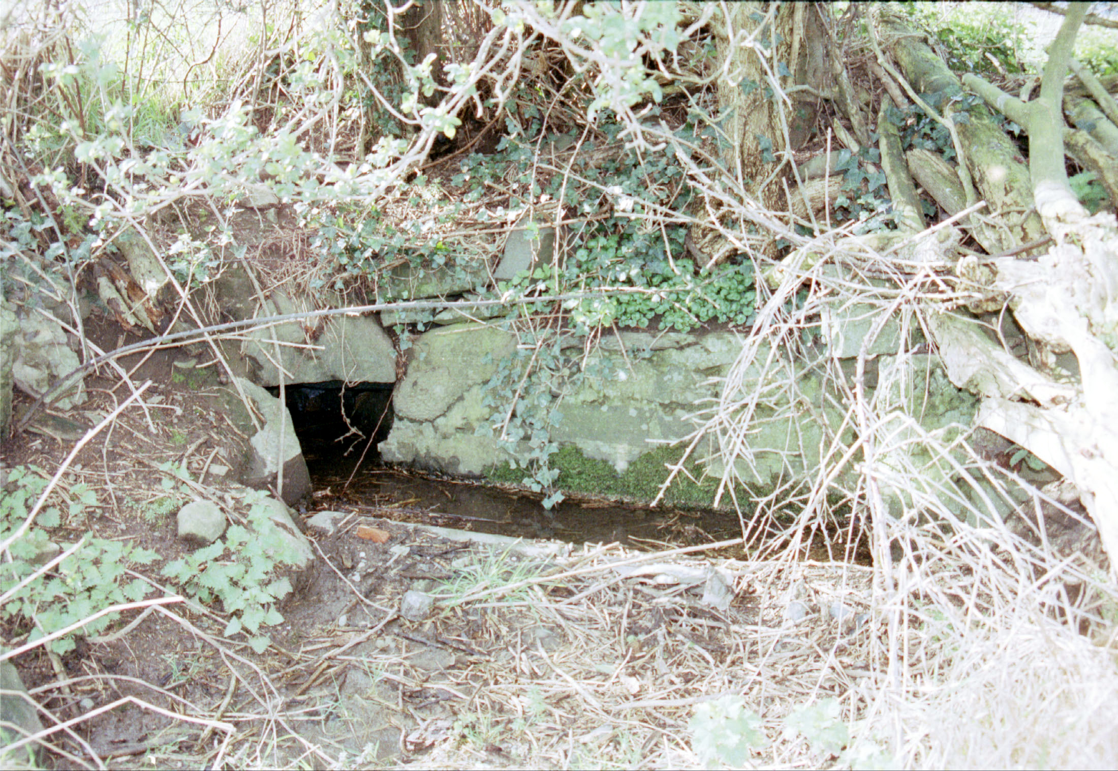1998 Holy Well Closeup 3